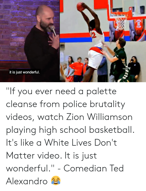 """brutality: it is just wonderful """"If you ever need a palette cleanse from police brutality videos, watch Zion Williamson playing high school basketball. It's like a White Lives Don't Matter video. It is just wonderful.""""   - Comedian Ted Alexandro 😂"""