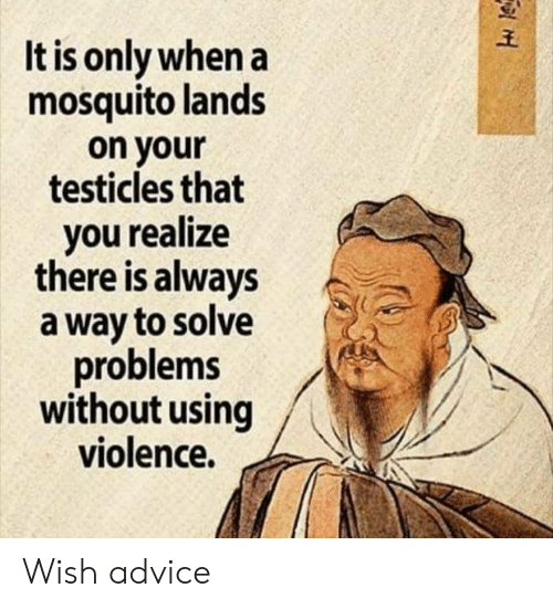 Advice, Mosquito, and You: It is only when a  mosquito lands  on your  testicles that  you realize  there is always  a way to solve  problems  without using  violence. Wish advice