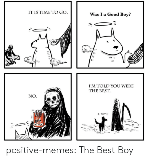 Memes, Tumblr, and Best: IT IS TIME TO GO  I'M TOLD YOU WERE  THE BEST  NO  BITES positive-memes:  The Best Boy