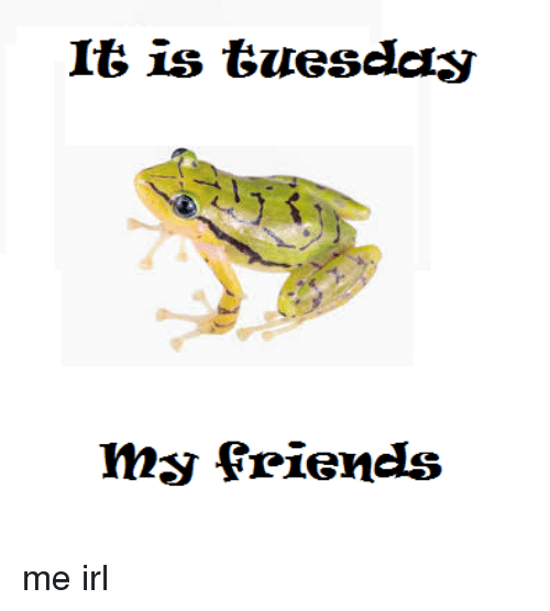 Friends, Irl, and Me IRL: It is tuesday  my friends