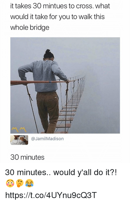 Memes, Cross, and 🤖: it takes 30 mintues to cross. what  would it take for you to walk this  whole bridge  ペペ  @JamilMadison  30 minutes 30 minutes.. would y'all do it?! 😳🤔😂 https://t.co/4UYnu9cQ3T