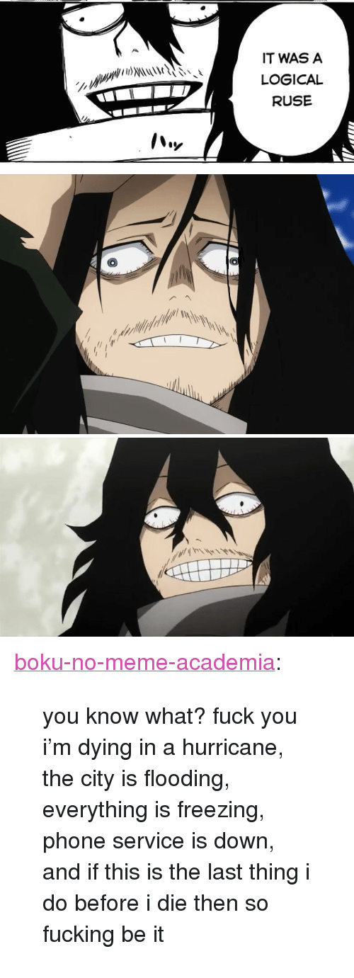 """ruse: IT WAS A  LOGICAL  RUSE   il <p><a href=""""https://boku-no-meme-academia.tumblr.com/post/164688046128/you-know-what-fuck-you-im-dying-in-a-hurricane"""" class=""""tumblr_blog"""">boku-no-meme-academia</a>:</p><blockquote><p>you know what? fuck you i'm dying in a hurricane, the city is flooding, everything is freezing, phone service is down, and if this is the last thing i do before i die then so fucking be it</p></blockquote>"""