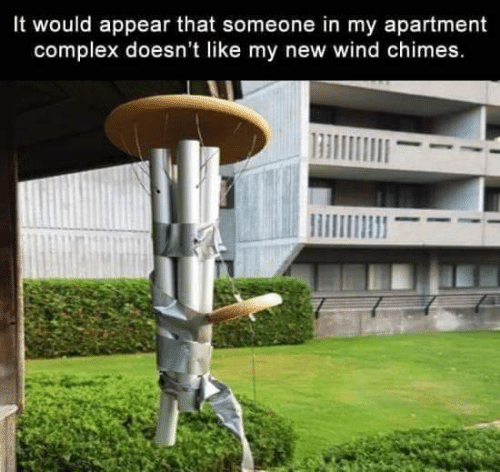 Complex, Dank, and 🤖: It would appear that someone in my apartment  complex doesn't like my new wind chimes.