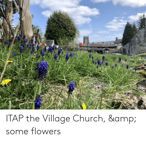 The Village: ITAP the Village Church, & some flowers