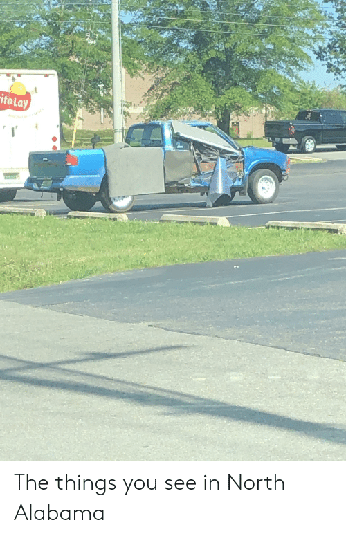 Alabama, Trashy, and You: itoLay The things you see in North Alabama
