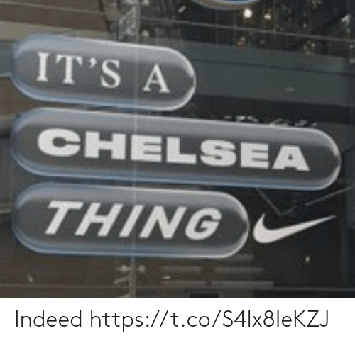 Chelsea, Memes, and Indeed: IT'S A  CHELSEA  THING Indeed https://t.co/S4lx8IeKZJ