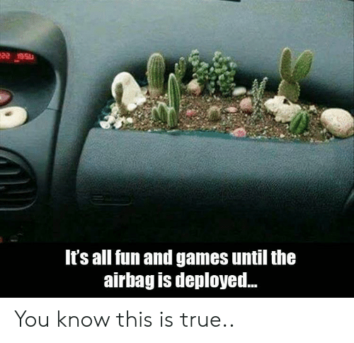 True, Games, and Fun: It's all fun and games until the  airbag is deployed.. You know this is true..