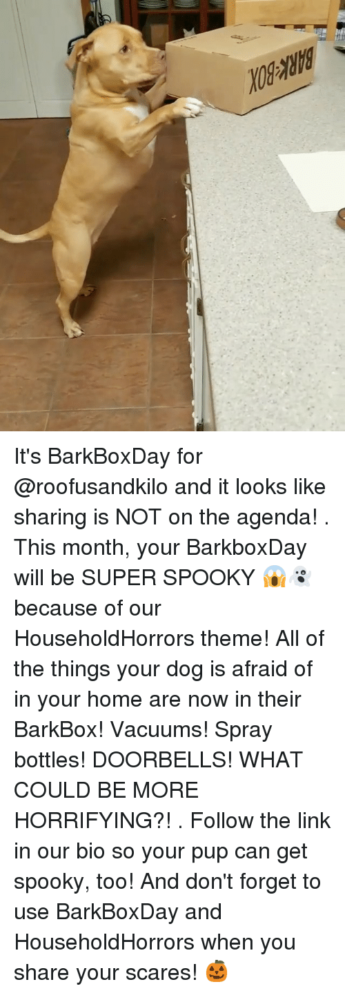 Memes, Home, and Link: It's BarkBoxDay for @roofusandkilo and it looks like sharing is NOT on the agenda! . This month, your BarkboxDay will be SUPER SPOOKY 😱👻 because of our HouseholdHorrors theme! All of the things your dog is afraid of in your home are now in their BarkBox! Vacuums! Spray bottles! DOORBELLS! WHAT COULD BE MORE HORRIFYING?! . Follow the link in our bio so your pup can get spooky, too! And don't forget to use BarkBoxDay and HouseholdHorrors when you share your scares! 🎃