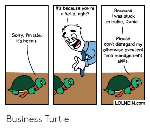 Sorry, Traffic, and Business: It's because you're  a turtle, right?  Because  I was stuck  in traffic, Daniel  Sorry, I'm late  It's becau  Please  don't disregard my  otherwise excellent  time management  skills  LOLNEIN.com Business Turtle