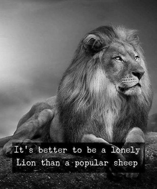Lion, Sheep, and Popular: It's better to be a lonely  Lion than a popular sheep