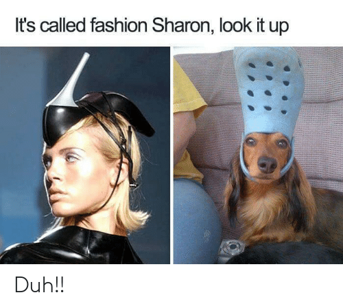 duh: It's called fashion Sharon, look it up Duh!!