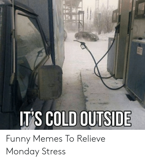 Funny Stress Memes: IT'S COLD OUTSIDE Funny Memes To Relieve Monday Stress