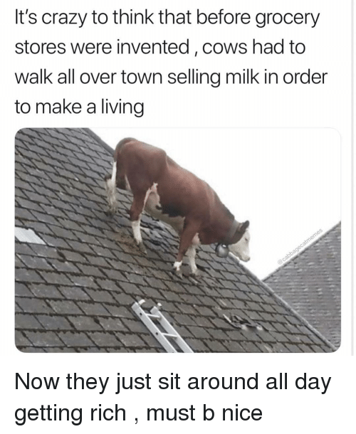 Crazy, Dank Memes, and Living: It's crazy to think that before grocery  stores were invented, cows had to  walk all over town selling milk in order  to make a living Now they just sit around all day getting rich , must b nice