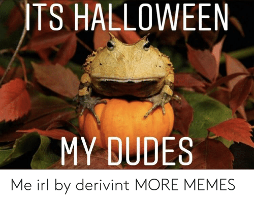 My Dudes: ITS HALLOWEEN  MY DUDES Me irl by derivint MORE MEMES