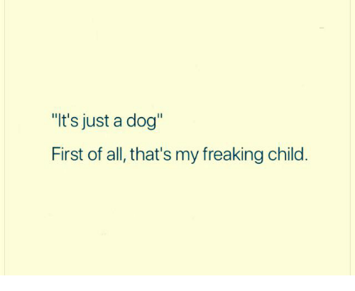 """Dank, 🤖, and Dog: """"It's just a dog""""  First of all, that's my freaking child."""
