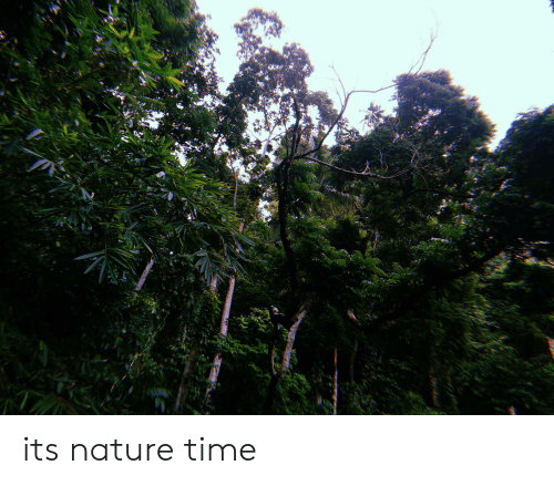 Nature, Time, and Its: its nature time