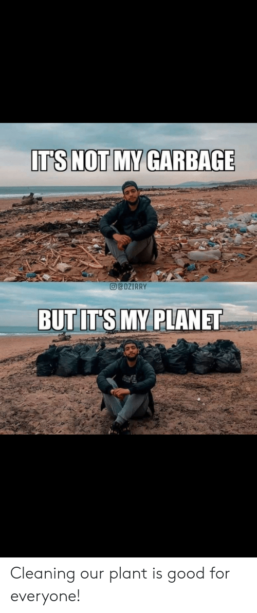 plant: IT'S NOT MY GARBAGE  DZIRRY  BUT IT'S MY PLANET Cleaning our plant is good for everyone!