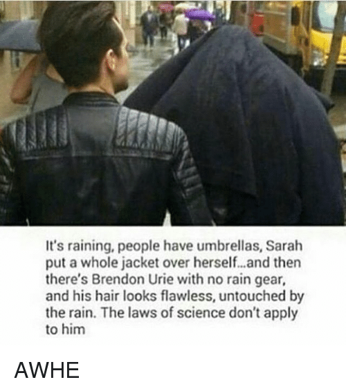 Memes, Hair, and Rain: It's raining, people have umbrellas, Sarah  put a whole jacket over herself...and then  there's Brendon Urie with no rain gear,  and his hair looks flawless, untouched by  the rain. The laws of science don't apply  to him AWHE