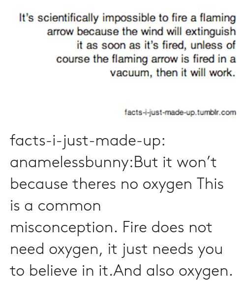 Facts, Fire, and Soon...: It's scientifically impossible to fire a flaming  arrow because the wind will extinguish  it as soon as it's fired, unless of  course the flaming arrow is fired in a  vacuum, then it will work.  facts-i-just-made-up.tumbir.com facts-i-just-made-up:  anamelessbunny:But it won't because theres no oxygen This is a common misconception.Fire does not need oxygen, it just needs you to believe in it.And also oxygen.