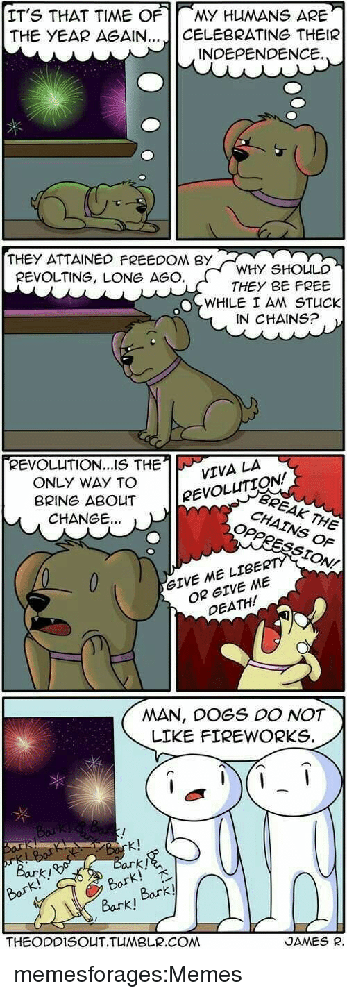 "Dogs, Memes, and Target: IT'S THAT TIME OF MY HUMANS ARE-  THE YEAR AGAIN 」| CELEBRATING THEIR  INDEPENDENCE.  THEY ATTAINEO FREEDOM BYY  WHY SHOULD  THEY BE FREE  REVOLTING, LONG AGC  WHILE I AM STUCK  IN CHAINS?  REVOLUTION...S THETVA LA  ONLY WAY TO  BRING ABOuT eVOLUTI  BREAK  CHANGE...  THE  OF  STON/  OR GIVE ME  DEATH  GIVE ME LIBERTY  MAN, DOGS DO NOT  LIKE FIREWORKS.  K!  Bark!  Bork!  Bark!""  Bark!  THEODD1SOUT.TUMBLR.COM  JAMES R. memesforages:Memes"