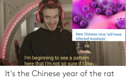 Its: It's the Chinese year of the rat
