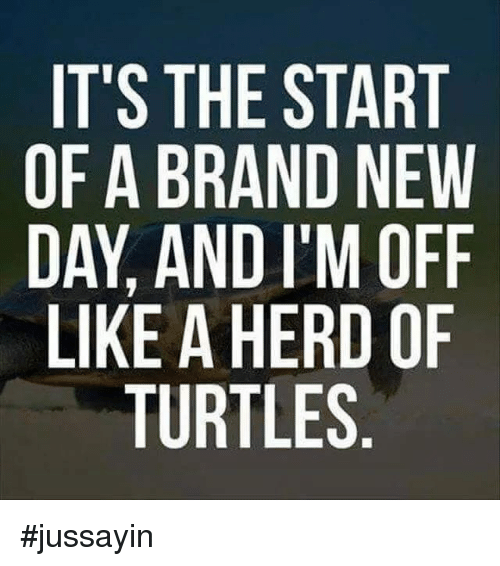 Im Off: IT'S THE START  OF A BRAND NEW  DAY, AND I'M OFF  LIKE A HERD OF  TURTLES #jussayin