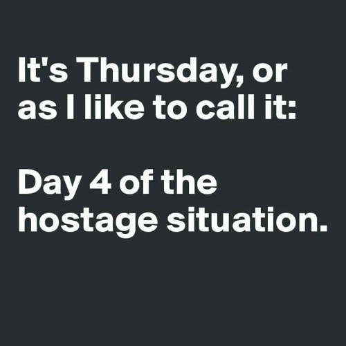 Dank, 🤖, and Day: It's Thursday, or  as I like to call it:  Day 4 of the  hostage situation.