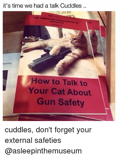 Memes, Patriotic, and American: it's time we had a talk Cuddles  THE AMERICAN  ASSOC IAT  PATRIOTS  ionship  How to Talk to  Your Cat About  Gun Safety cuddles, don't forget your external safeties @asleepinthemuseum