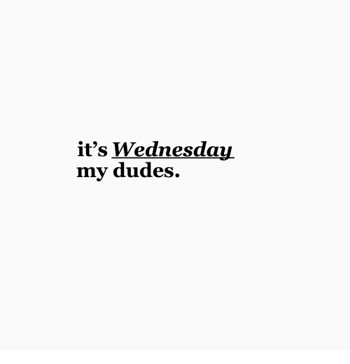 Wednesday, My-Dudes, and Its Wednesday My Dudes: it's Wednesday  my dudes.