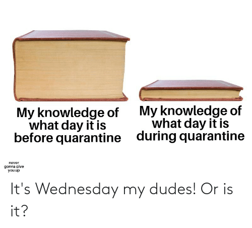 My Dudes: It's Wednesday my dudes! Or is it?