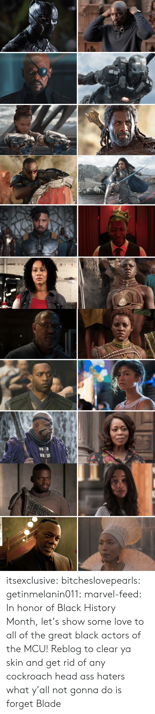 Ass, Black History Month, and Blade: itsexclusive:  bitcheslovepearls:   getinmelanin011:  marvel-feed:  In honor of Black History Month, let's show some love to all of the great black actors of the MCU!  Reblog to clear ya skin and get rid of any cockroach head ass haters   what y'all not gonna do is forget Blade