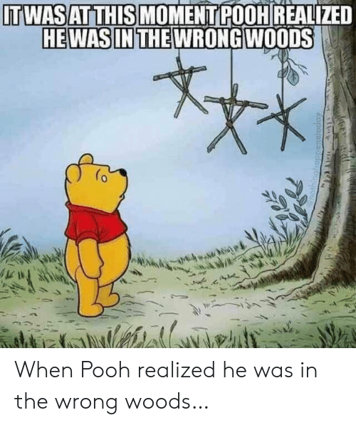 Moment, Woods, and This: ITWASAT THIS MOMENT POOH REALIZED  HEWAS IN THE WRONG WOODS When Pooh realized he was in the wrong woods…