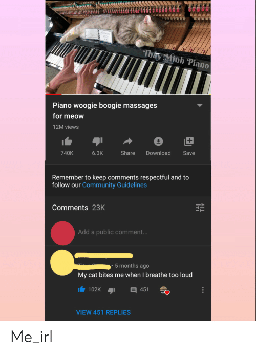 Community, Piano, and Irl: iu BALL  Thay Minh Piano  Piano woogie boogie massages  for meow  12M views  Share  740K  6.3K  Download  Save  Remember to keep comments respectful and to  follow our Community Guidelines  Comments 23K  Add a public comment...  5 months ago  My cat bites me when I breathe too loud  102K  451  VIEW 451 REPLIES Me_irl