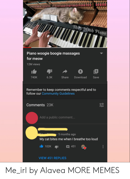 Community, Dank, and Memes: iu BALL  Thay Minh Piano  Piano woogie boogie massages  for meow  12M views  Share  740K  6.3K  Download  Save  Remember to keep comments respectful and to  follow our Community Guidelines  Comments 23K  Add a public comment...  5 months ago  My cat bites me when I breathe too loud  102K  451  VIEW 451 REPLIES Me_irl by Alavea MORE MEMES