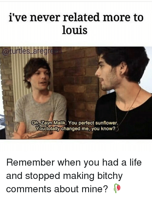 zayne: i've never related more to  louis  a turtles are gre  On Zayn Malik. You perfect sunflower.  Mou totally changed me, you know? Remember when you had a life and stopped making bitchy comments about mine? 🥀