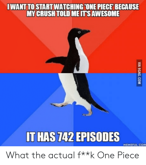 What The Actual F: IWANT TO STARTWATCHINGCONE PIECE BECAUSE  MY CRUSH TOLD ME ITS AWESOME  T HAS 742 EPISODES  MEMEFUL.COM What the actual f**k One Piece