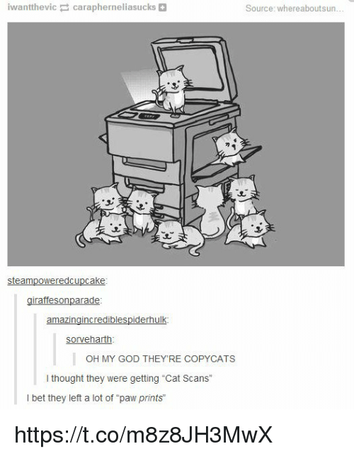 """cat scans: iwanttheviccarapherneliasucks+  Source: whereaboutsun  steampoweredcupcake  sorveharth  OH MY GOD THEY'RE COPYCATS  I thought they were getting """"Cat Scans""""  I bet they left a lot of """"paw prints https://t.co/m8z8JH3MwX"""