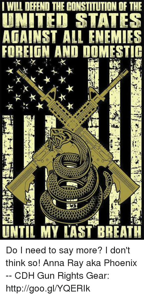 Anna, Memes, and Constitution: IWILL DEFEND THE CONSTITUTION OF THE  UNITED STATES  AGAINST ALL ENEMIES  FOREIGN AND DOMESTIG  UNTIL MY LAST BREATH Do I need to say more?  I don't think so!  Anna Ray aka Phoenix -- CDH Gun Rights Gear: http://goo.gl/YQERIk