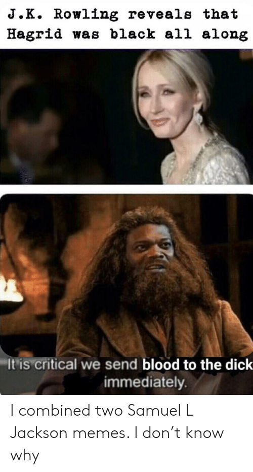Memes, Reddit, and Samuel L. Jackson: J.K. Rowling reveals that  Hagrid was black all along  It is critical we send blood to the dick  immediately. I combined two Samuel L Jackson memes. I don't know why