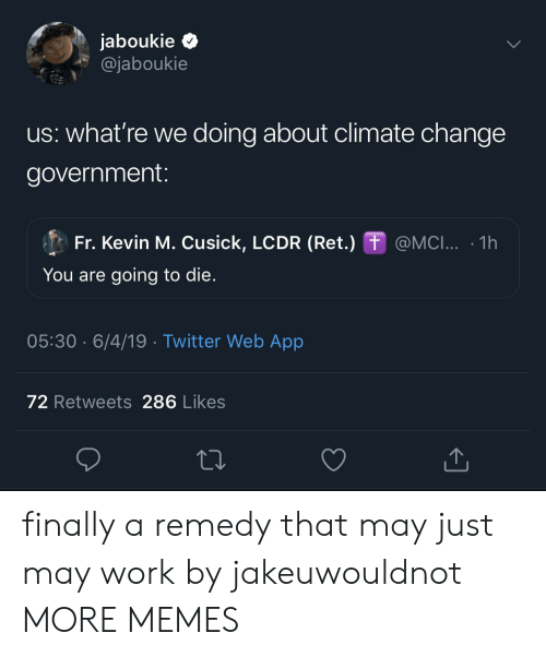 Dank, Memes, and Target: jaboukie  @jaboukie  us: what're we doing about climate change  government:  Fr. Kevin M. Cusick, LCDR (Ret.) @MCI...  1h  You are going to die.  05:30 6/4/19 Twitter Web App  72 Retweets 286 Likes  1 finally a remedy that may just may work by jakeuwouldnot MORE MEMES