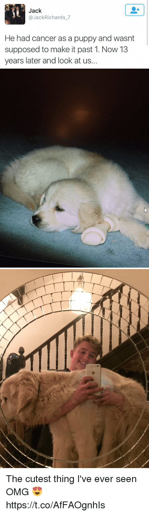 Omg, Cancer, and Puppy: Jack  @JackRichards_7  He had cancer as a puppy and wasnt  supposed to make it past 1. Now 13  years later and look at us. The cutest thing I've ever seen OMG 😍 https://t.co/AfFAOgnhIs