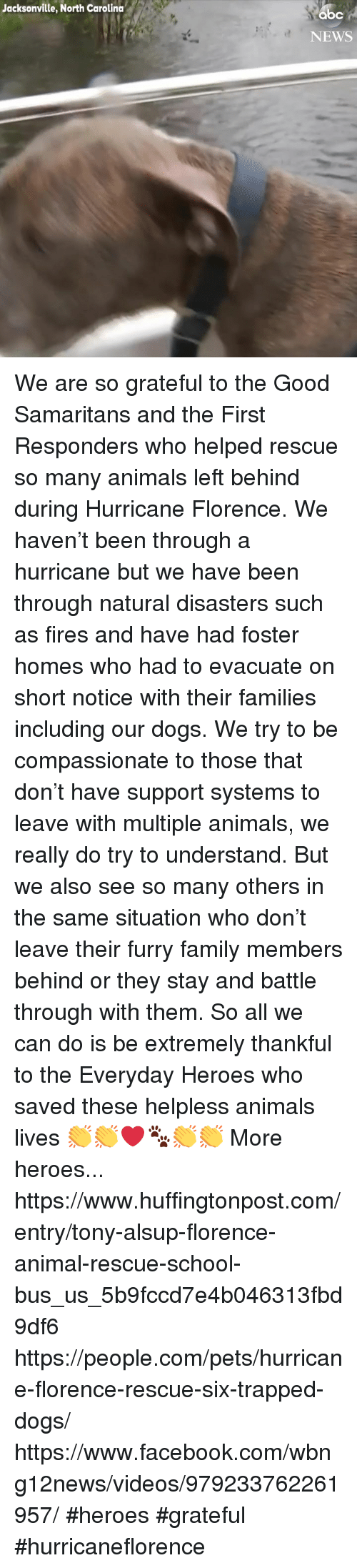 Animals, Dogs, and Facebook: Jacksonville, North Carolina  NEWS We are so grateful to the Good Samaritans and the First Responders who helped rescue so many animals left behind during Hurricane Florence.   We haven't been through a hurricane but we have been through natural disasters such as fires and have had foster homes who had to evacuate on short notice with their families including our dogs.   We try to be compassionate to those that don't have support systems to leave with multiple animals, we really do try to understand. But we also see so many others in the same situation who don't leave their furry family members behind or they stay and battle through with them.   So all we can do is be extremely thankful to the Everyday Heroes who saved these helpless animals lives 👏👏❤️🐾👏👏  More heroes... https://www.huffingtonpost.com/entry/tony-alsup-florence-animal-rescue-school-bus_us_5b9fccd7e4b046313fbd9df6  https://people.com/pets/hurricane-florence-rescue-six-trapped-dogs/  https://www.facebook.com/wbng12news/videos/979233762261957/  #heroes #grateful #hurricaneflorence