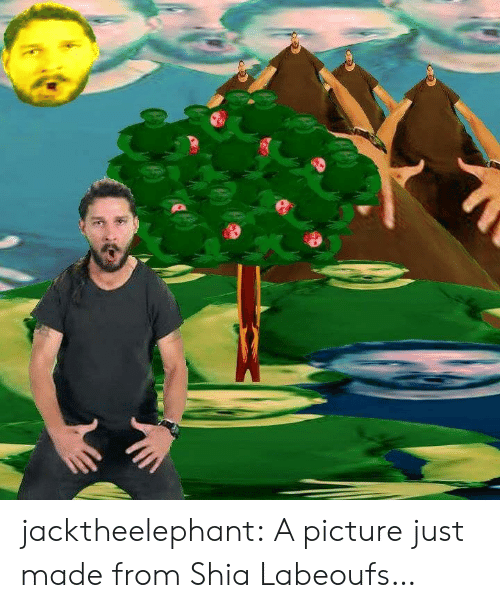 Tumblr, Blog, and Http: jacktheelephant:  A picture just made from Shia Labeoufs…