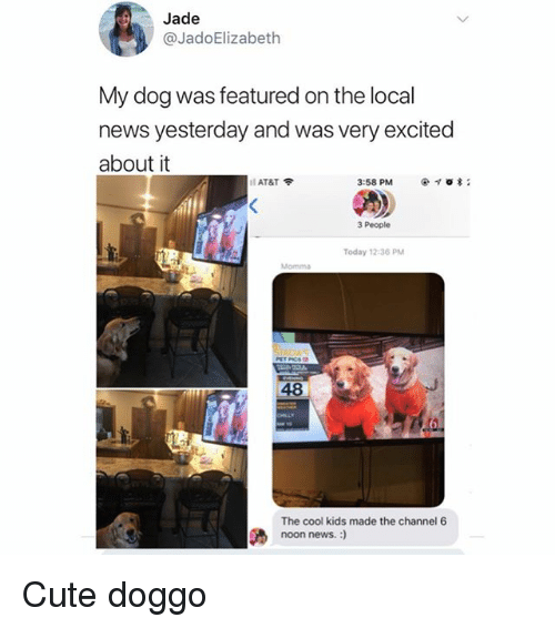 Cute, Memes, and News: Jade  @JadoElizabeth  My dog was featured on the local  news yesterday and was very excited  about it  11 AT&T令  3:58 PM  * ;  3 People  Today 12-36 PM  48  The cool kids made the channel 6  noon news. :) Cute doggo