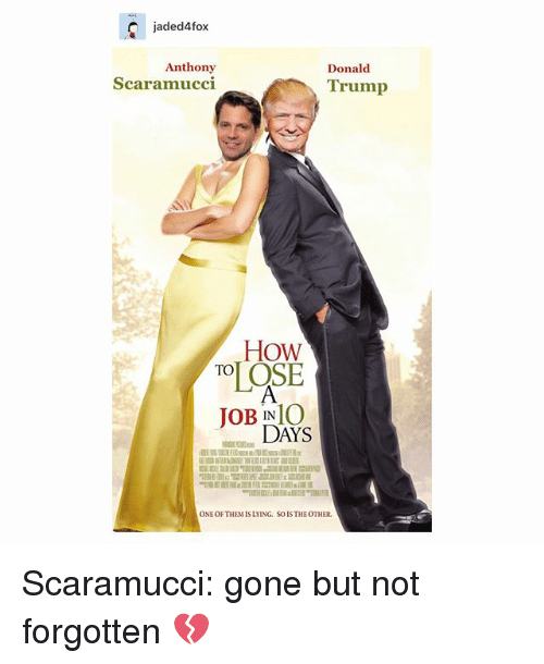 Donald Trump, Memes, and Trump: jaded4fox  Anthony  Scaramucci  Donald  Trump  How  JOB INIO  DAYS  ONE OF THEM IS LYING. SO IS THEOTHER Scaramucci: gone but not forgotten 💔