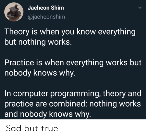 Practice: Jaeheon Shim  @jaeheonshim  Theory is when you know everything  but nothing works.  Practice is when everything works but  nobody knows why.  In computer programming, theory and  practice are combined: nothing works  and nobody knows why. Sad but true