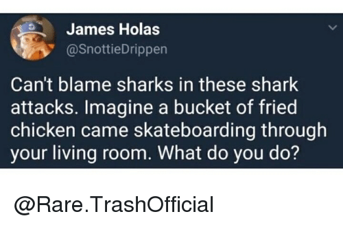 skateboarding: James Holas  @SnottieDrippen  Can't blame sharks in these shark  attacks. Imagine a bucket of fried  chicken came skateboarding through  your living room. What do you do? @Rare.TrashOfficial