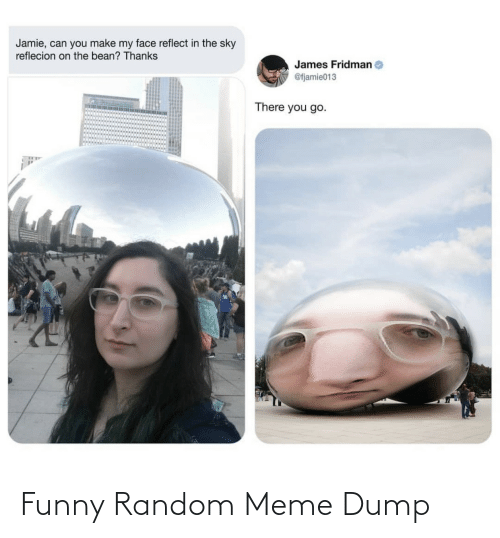 Funny, Meme, and Random: Jamie, can you make my face reflect in the sky  reflecion on the bean? Thanks  James Fridman  @fjamie013  There you go. Funny Random Meme Dump