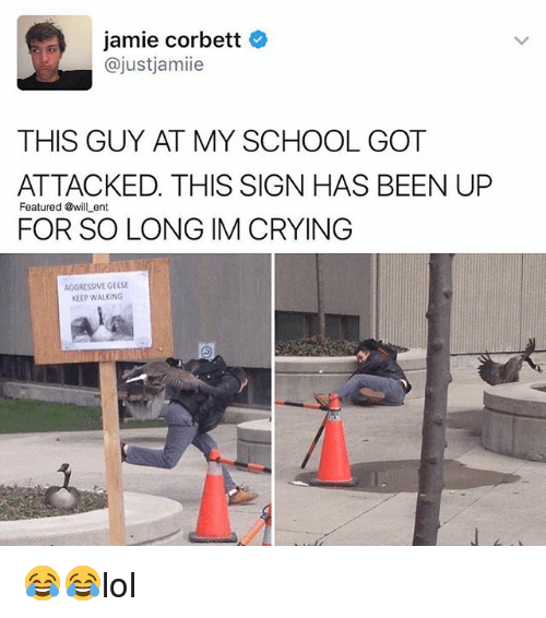 Crying, Memes, and School: jamie Corbett  ajust jamiie  THIS GUY AT MY SCHOOL GOT  ATTACKED. THIS SIGN HAS BEEN UP  Featured @will ent  FOR SO LONG IM CRYING  AGGRESSIVE GEESE  KEEP WALKING 😂😂lol