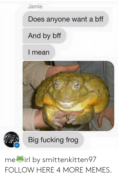 Dank, Fucking, and Memes: Jamie  Does anyone want a bff  And by bff  l mean  Big fucking frog me🐸irl by smittenkitten97 FOLLOW HERE 4 MORE MEMES.